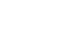 Gavs Group Logo